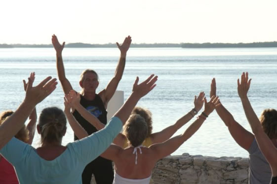 dolphins_and_yoga